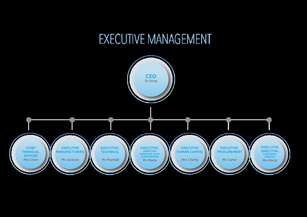 aberdare-executive-structure